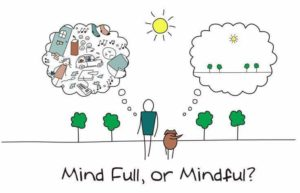 Mind Full, Mindful